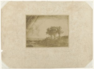The Three Trees, 1854-1858, photo: Bisson frères (Rijksmuseum Amsterdam)